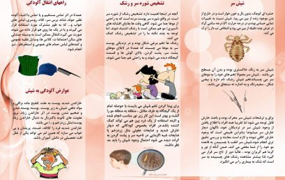 معاونت دانشجویی از تهیه بروشورهای مبارزه با بیماری در سراهای دانشجویی خبر داد: