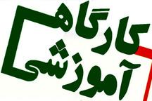 کارگاه آموزشی هنر مقاله نویسی